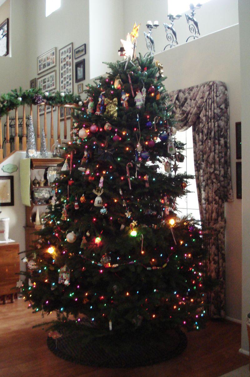 Tree 008