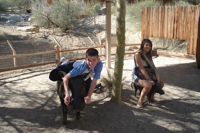 Desert 2009 006