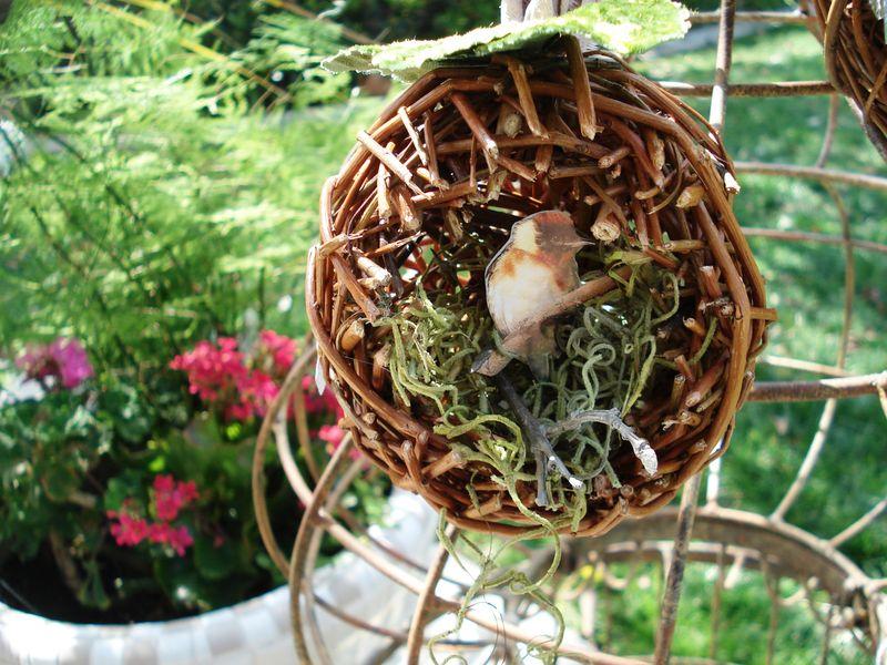 Nest 007