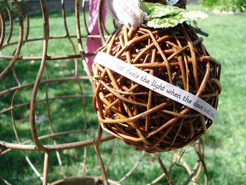 Nest 008