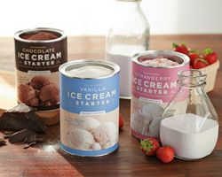 Ws ice cream4